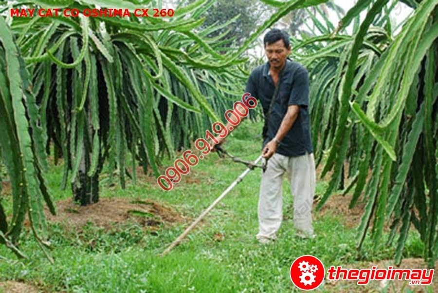 Ứng dụng của máy cắt cỏ trong đời sống