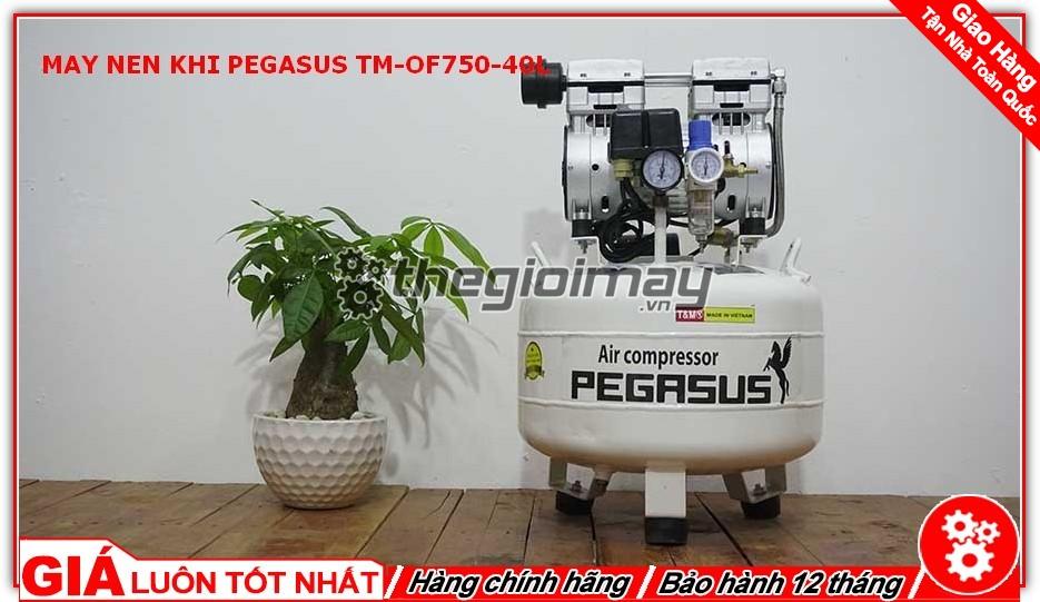 Máy nén khí ko dầu Pegasus TM-OF750-40L