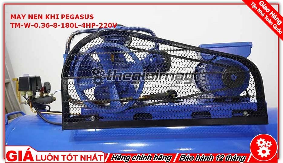 Bộ động cơ của Pegasus TM-W-0.36/8-180L-4HP-220V