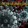 Thông tin về virus corona và các cách phòng chống dịch bện này
